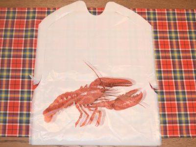 lobsterbib1